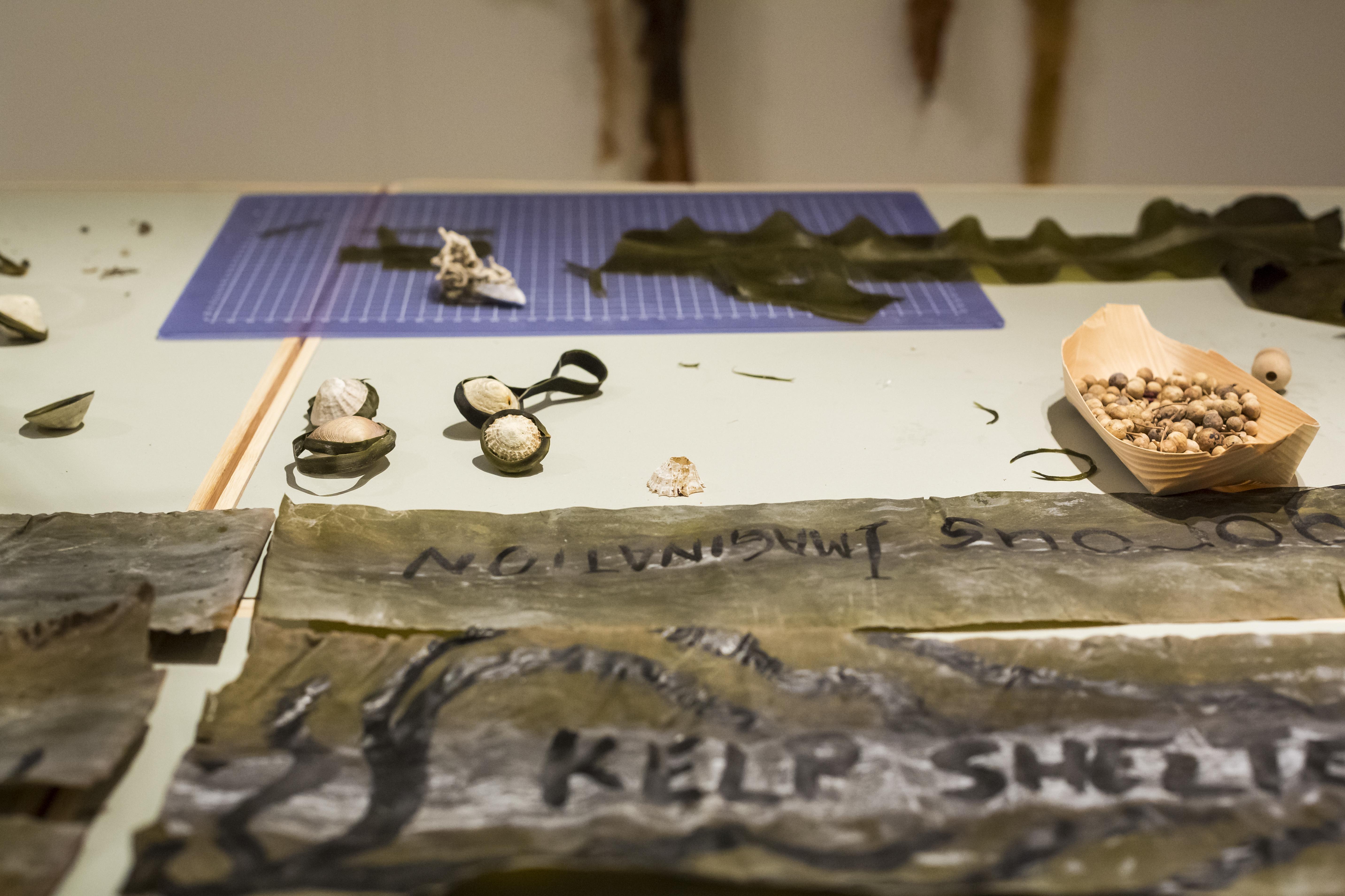 Julia Lohmannin Critical Tide -näyttely Designmuseossa